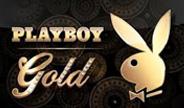 mg-playboy-gold-thumbnail