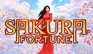 QkS-Sakura-Fortune-thumbnail